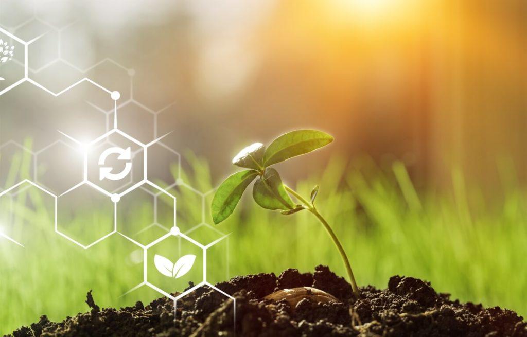 digitalisation agroalimentaire : les initiatives passent par des partenariats